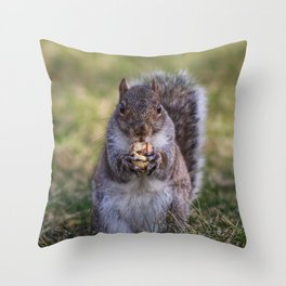 Squirrel Having some Lunch, Charleston, WV Throw Pillow