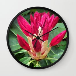 Showing Promise, A Rhododendron Bud Wall Clock