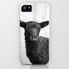 Gotland Lamb iPhone Case