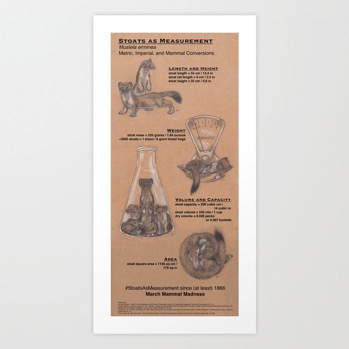 Stoats as Measurement Art Print