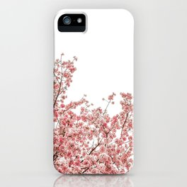 Cherry Blossoms (Color) iPhone Case