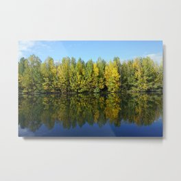 True Autumn Colours Metal Print