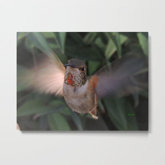 Can't a Gal Have a Drink in Peace? Metal Print