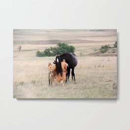Young Cheyenne with Pony Metal Print