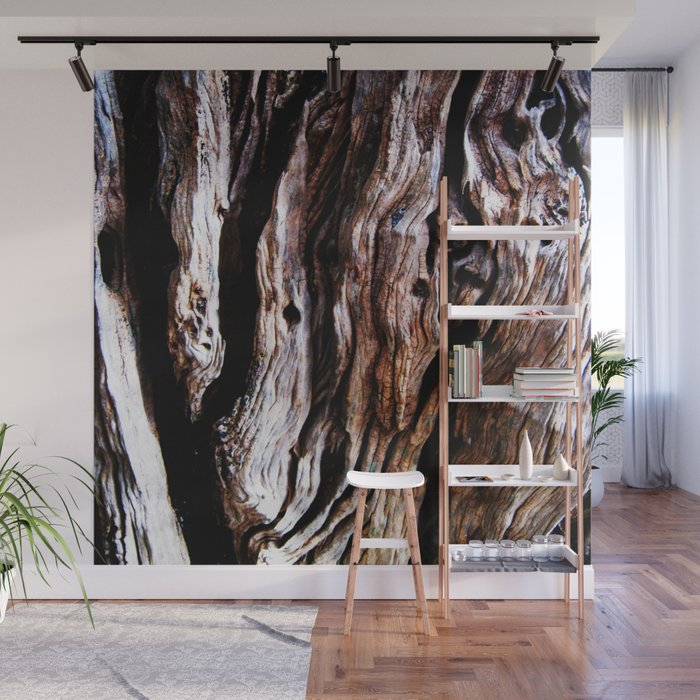 Ancient olive tree wood close-up Wall Mural