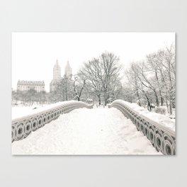 Winter Snow in New York City Canvas Print