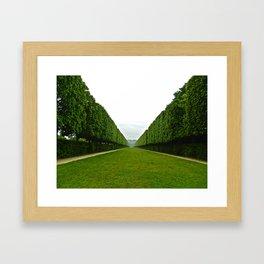 Between The Hedges Framed Art Print