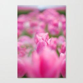 JW Photography Canvas Print