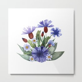 A collection of herbs and flowers. Chamomile, plantain, cornflowers. Watercolor. Metal Print