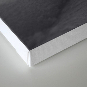 120807-9044 Canvas Print