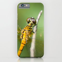 Dragonfly at Bombay Hook Animal / Wildlife Photograph iPhone Case