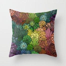 Succulent Garden Rainbow Throw Pillow