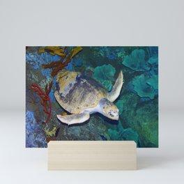 Kemp's Ridley Sea Turtle Mini Art Print