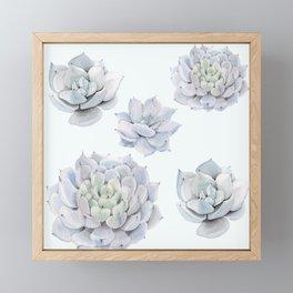 Blue Succulents Framed Mini Art Print