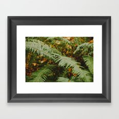 Fern Framed Art Print