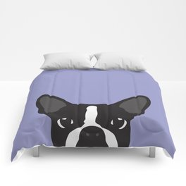 Boston Terrier Violet Comforters