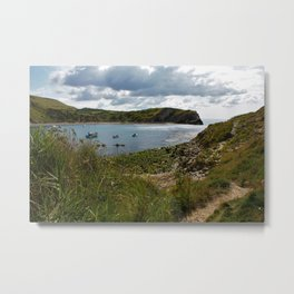 A path to the Sea Metal Print