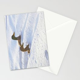 Ducks Swimming in Snow Stationery Cards