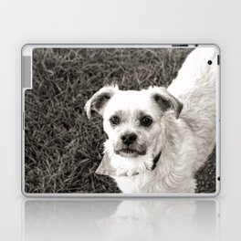 Fudge black and white Laptop & iPad Skin