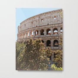 Lunch with a View Metal Print