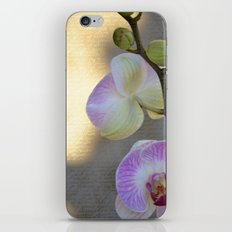 Pretty Orchids iPhone & iPod Skin
