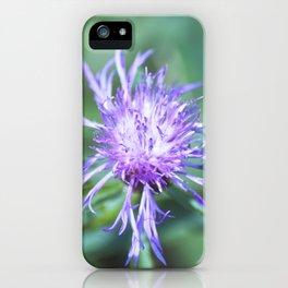 Knapweed iPhone Case