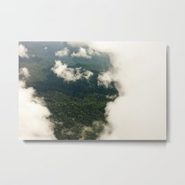 the rainforest  Metal Print