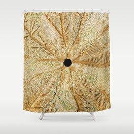 SAND DOLLAR Shower Curtain