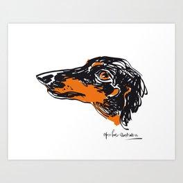 Zoe the datchshound Art Print