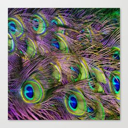 art nouveau bohemian turquoise purple teal green peacock feather Canvas Print