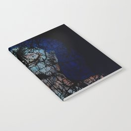 Vines and Confines  Notebook