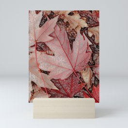 Maple leaves Mini Art Print