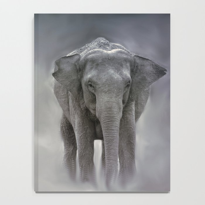 elephant in the jungle Notebook