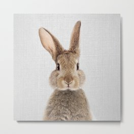 Rabbit - Colorful Metal Print