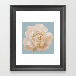 IVORY ROSE Framed Art Print