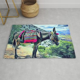 Mexican Burro Rug