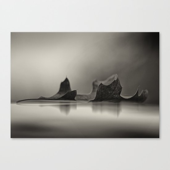 Seasons Reflected Canvas Print