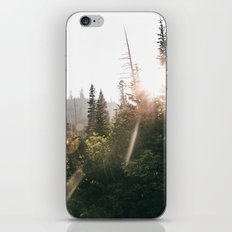 Sunny Forest II iPhone Skin