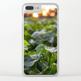 Southern Sunset Clear iPhone Case