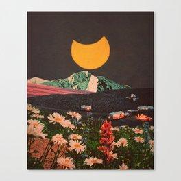 Parallels Canvas Print