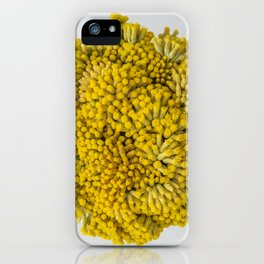 curry flowers II iPhone Case