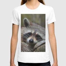 Lovely Raccoon T-shirt