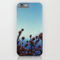 Sun-Bleached Blossom iPhone 6s Slim Case