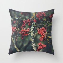 Rowan II Throw Pillow