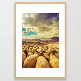Herd in Kurdistan Framed Art Print