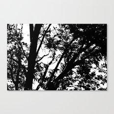 Pecan Tree Silhouette Canvas Print