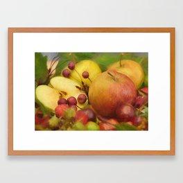 autumn fruits Framed Art Print