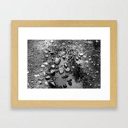 Pebble Puddle Framed Art Print