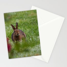 Meadow Bunny Stationery Cards