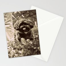 Man's Best Friend Stationery Cards